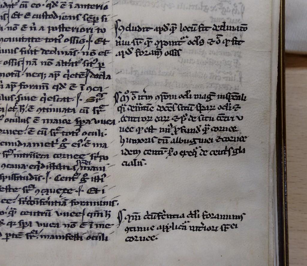 Pilcrows in Alhazen [965-1040]: De aspectibus. (c. 1250)